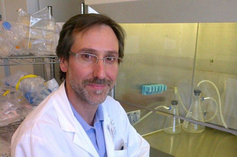 Doctor Antoni Ribas