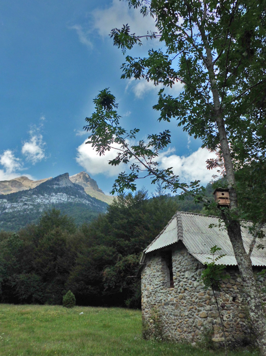 Caseta de pastores en Pineta