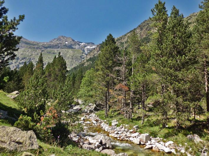 Río Barrosa y pico la Munia