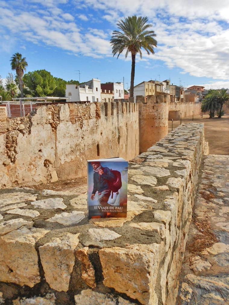 Alzira - Muralla medieval