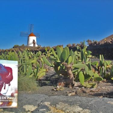 Lanzarote - Jardín de Cactus