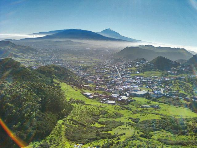 Tenerife - Monte de las Mercedes