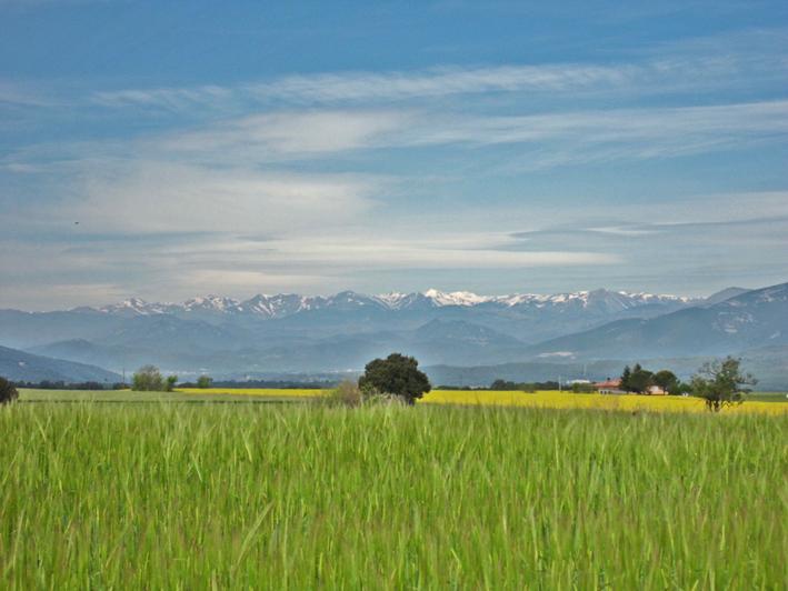 Pirineo desde l'Empordà